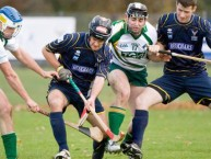 Hurling- sport gaélique