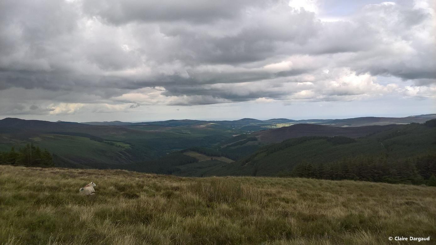 Crédit photo : Claire Dargaud, Vue panoramique du Parc National des Wicklow Mountains