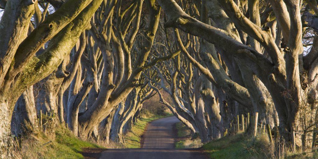 Une journée en Irlande du Nord